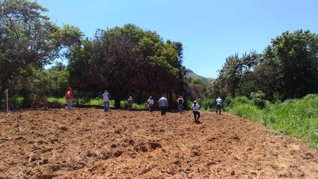 Conselho da APA Serra do Lajeado lança edital para voluntários de grupo de trabalho