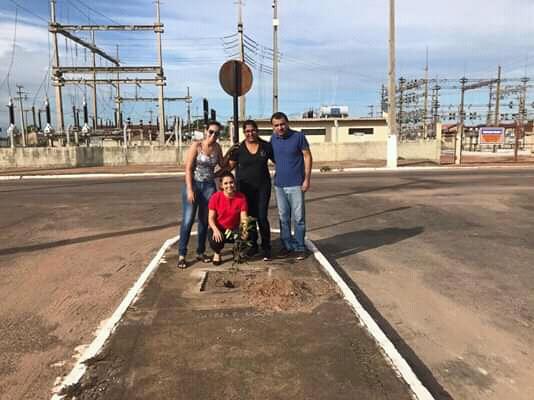 Prefeitura de Paraíso e Unest plantam mudas de árvores no Setor Oeste