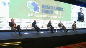 Importações de alimentos no continente africano atingem US $ 35 bilhões e países se esforçam para buscar a autossuficiência
