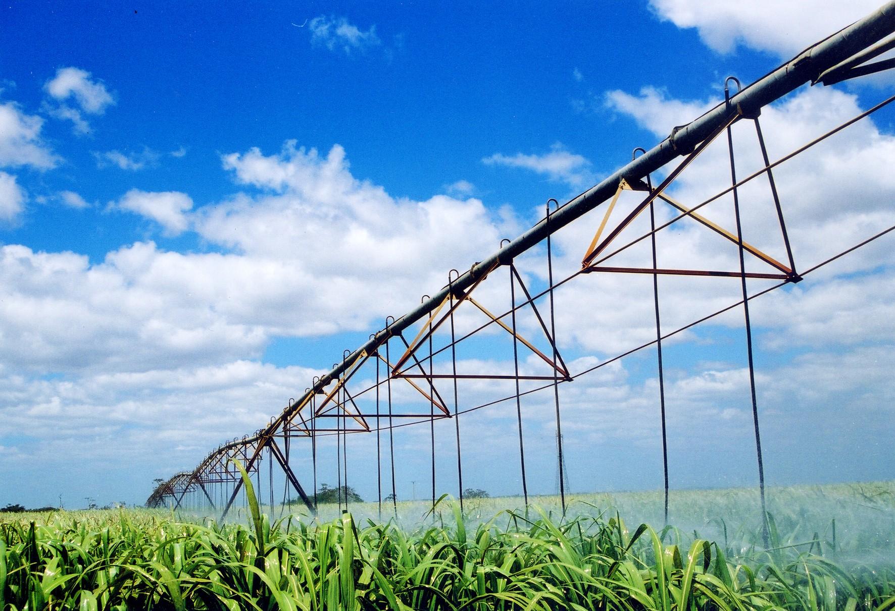 ANA conclui mapeamento da área com uso de água para cana-de-açúcar no Brasil