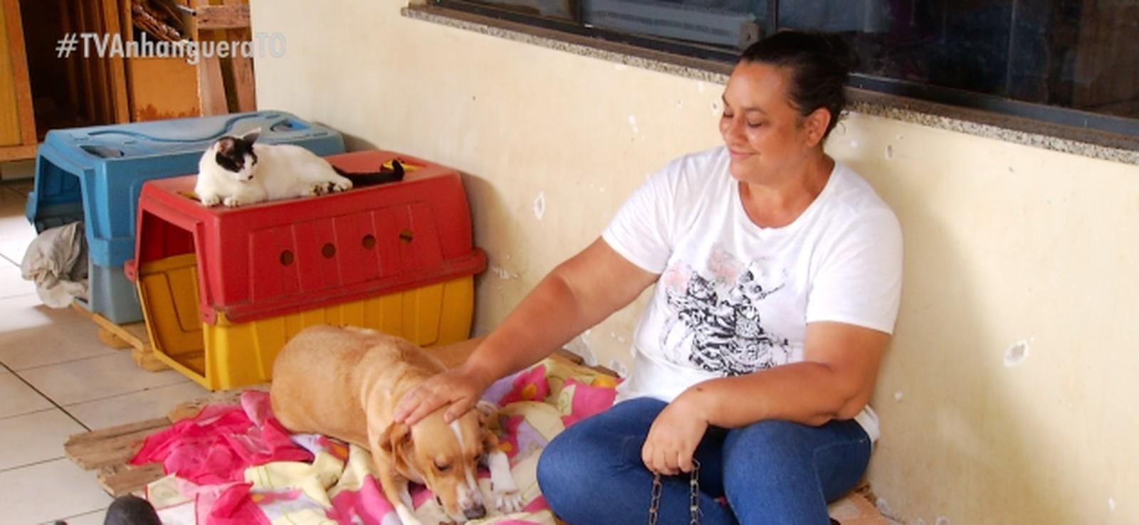 Protetora abriga mais de 40 animais abandonados na própria casa em Palmas