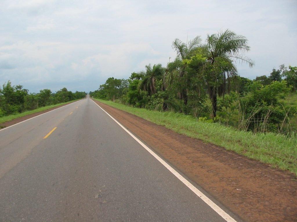 Homem morre atropelado às margens da BR-153 no município de Paraíso TO