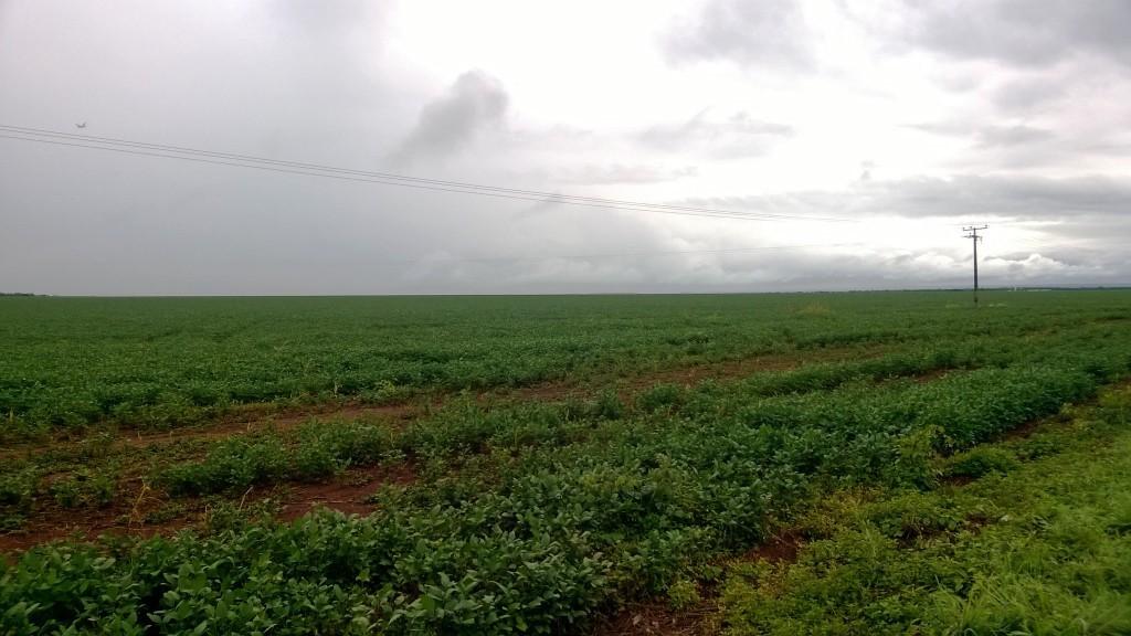 La Niña e início de período chuvoso no Tocantins