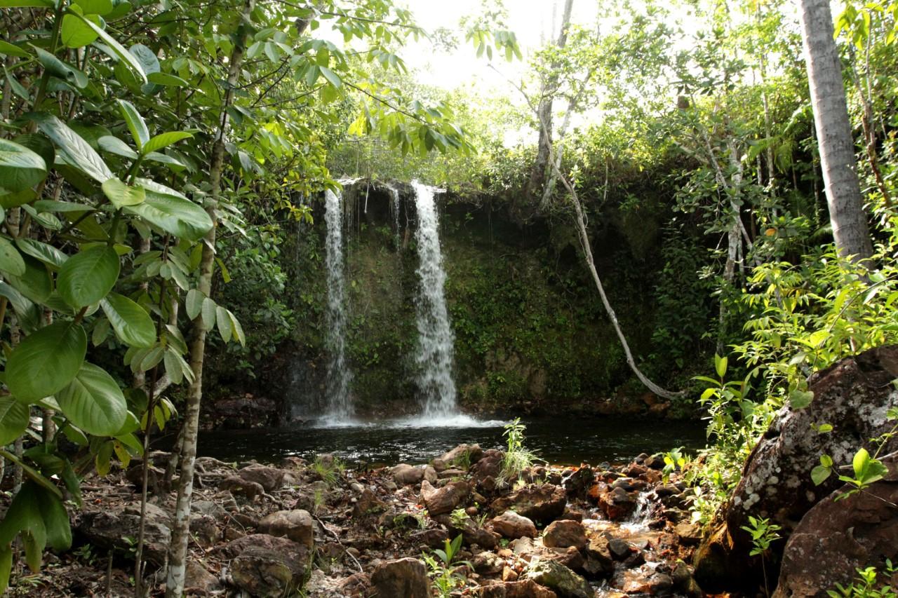 Projeto Reservas Privadas do Cerrado é prorrogado devido ao sucesso no Tocantins