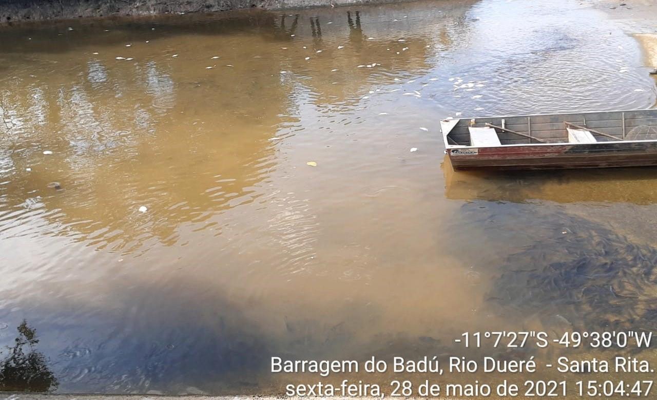 MPTO apura morte de peixes em barragem no Rio Dueré e a regularidade ambiental do empreendimento