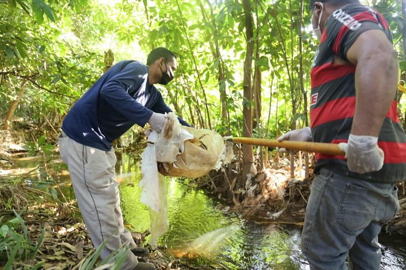 Equipe da AGD realiza limpeza nas margens do córrego Dois Irmãos, em Gurupi