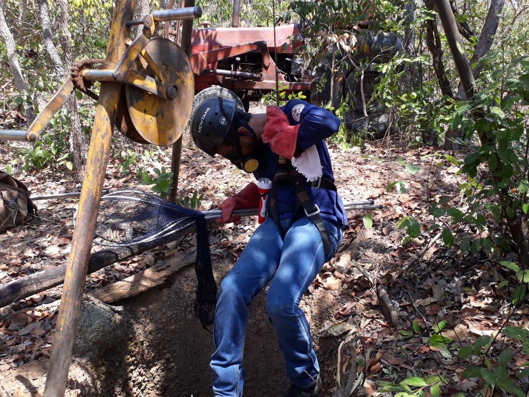 Adapec monitora abrigos de morcegos hematófagos em municípios da região sul do Tocantins