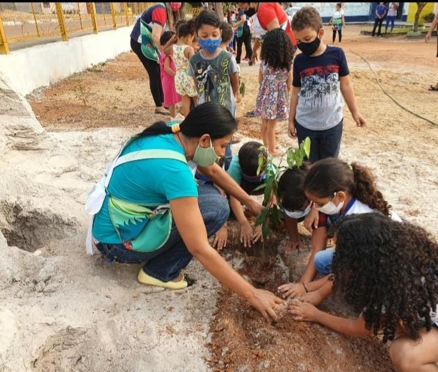 Viveiro de Gurupi doa mudas de espécies nativas às escolas municipais